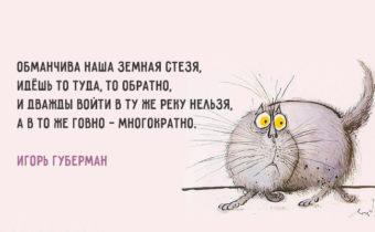 Забавные выражения Игоря Губермана