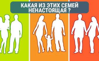 Какая, по твоему мнению, семья не является настоящей?