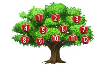 Тест: дерево целей и желаний