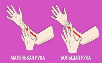 Психологический портрет по длине руки