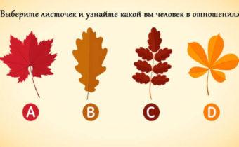 Выберите листок и узнайте, какой вы человек в отношениях