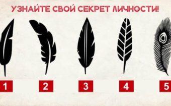 Тест: выберите перо, и узнайте свой секрет личности