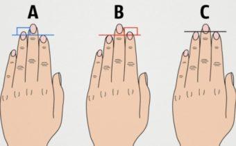 Тест по длине пальцев рук