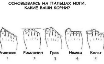 Узнайте о своем происхождении по пальцам стопы