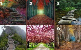 Тест: куда приведет вас ваша жизненная дорога