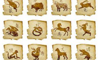 Знаки китайского гороскопа: их самые неприятные черты характера