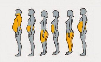 Почему мы набираем вес именно в этих частях тела