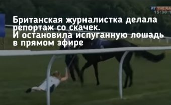 Британская журналистка делала репортаж со скачек. И остановила испуганную лошадь в прямом эфире