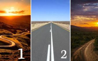 Тест: какую дорогу выбираете Вы