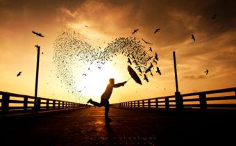 Как любовь меняет жизнь знаков зодиака