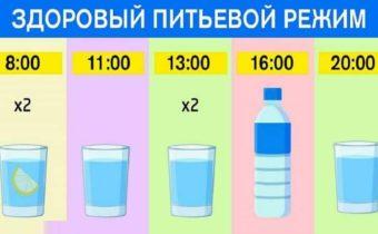 График для худеющих: ешь что хочешь и пей воду по часам