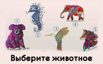 Тест: выберите животное и узнайте новое о себе