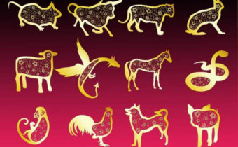 Восточный гороскоп животных по годам