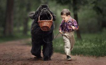 Сказочные фото детей с большими собаками (15 фото)