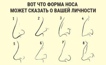 Что форма носа может сказать о личности человека
