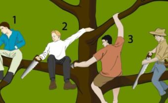 Выберите самого глупого человека на дереве