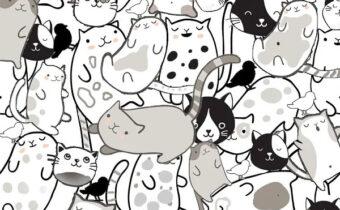 Тест: Сколько птиц вы видите среди кошек? Ваш ответ раскроет многое о вас