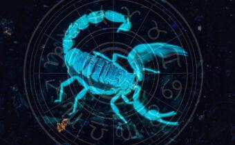 Зодиакальный Скорпион вступает в силу 24 октября 2020 года: советы знакам зодиака
